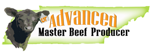 East Tennessee Healthy Beef