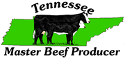 East Tennessee Local Beef